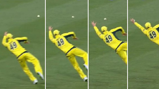 Cricket Player Lays Out For Amazing Catch