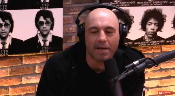 "Joe Rogan ""I shouldn't have said Ronda Rousey can beat male UFC fighters"""