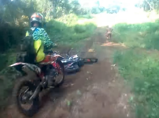 Crazy  Motot X Fools Getting Wild
