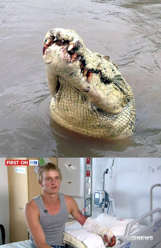 Drunk Guy Showing Off Jumped In River To Fight A Crocodile