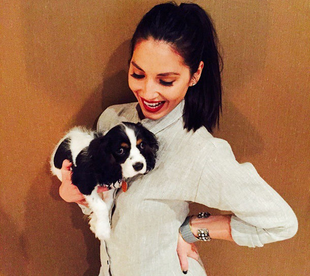 Olivia Munn Keeping Aaron Rodgers Last Name for Their Dogs