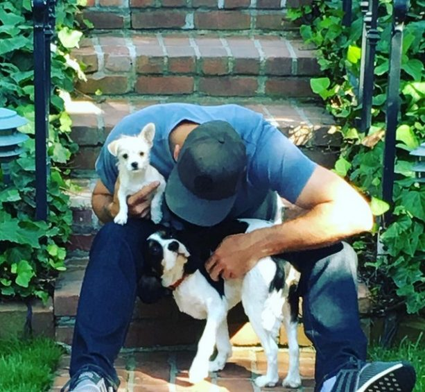 Aaron Rodgers Reportedly Has No Visitation Rights on his Dogs