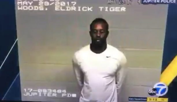 Now We Have Tiger Woods Video Inside a Holding Cell