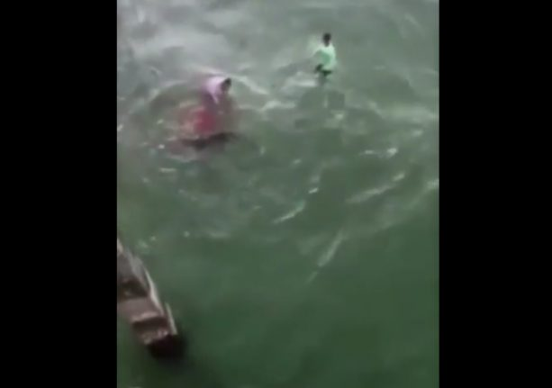 Shark Bites Moron Attempting To Play With It