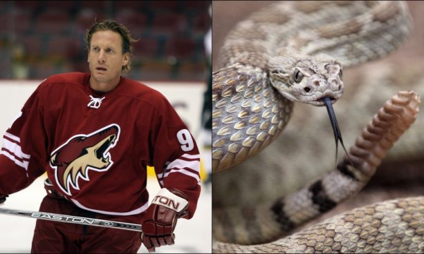 Arizona Living: Jeremy Roenick Battled a Rattlesnake with a Pair of golf Clubs