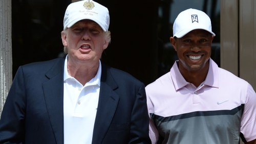 Donald Trump Warned Mistress to Stay Away From Tiger