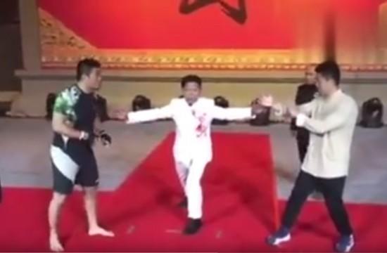 Video- Wing Chun Kung Fu vs MMA