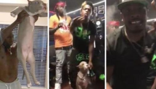 Rapper Steals NFL Players Dog Then Demands Ransom on Twitter