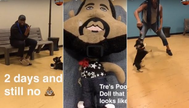 Dwyane Wade & Gabrielle Union are Having Some Serious Dog Issues