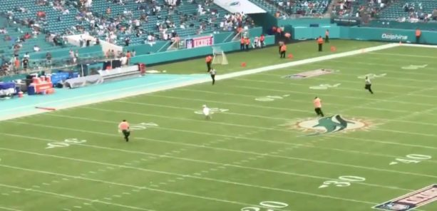 A Kid Tested The Dolphins Security During Rain Delay