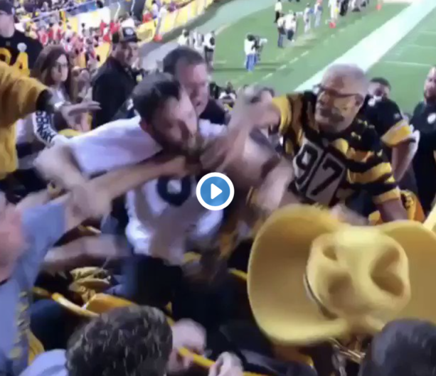 Steelers Fans Punching Each Other Is Always Worth A Watch